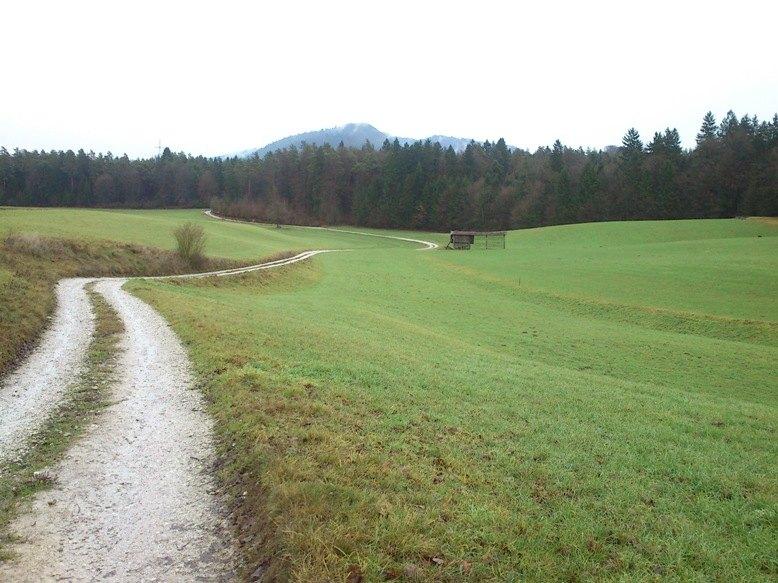 In še okoli Šmarne gore