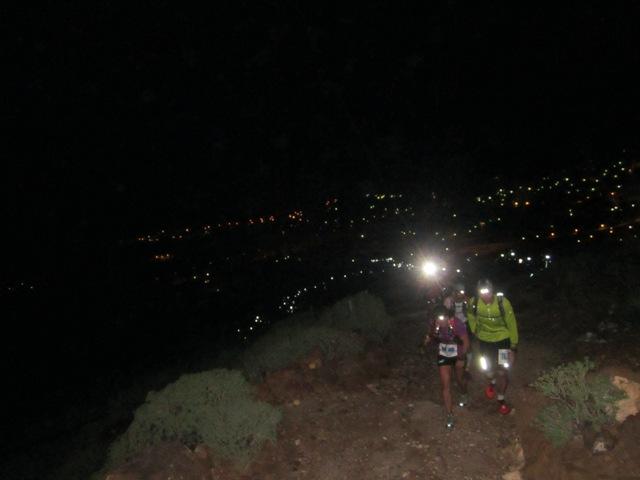 Nočna kača lučk